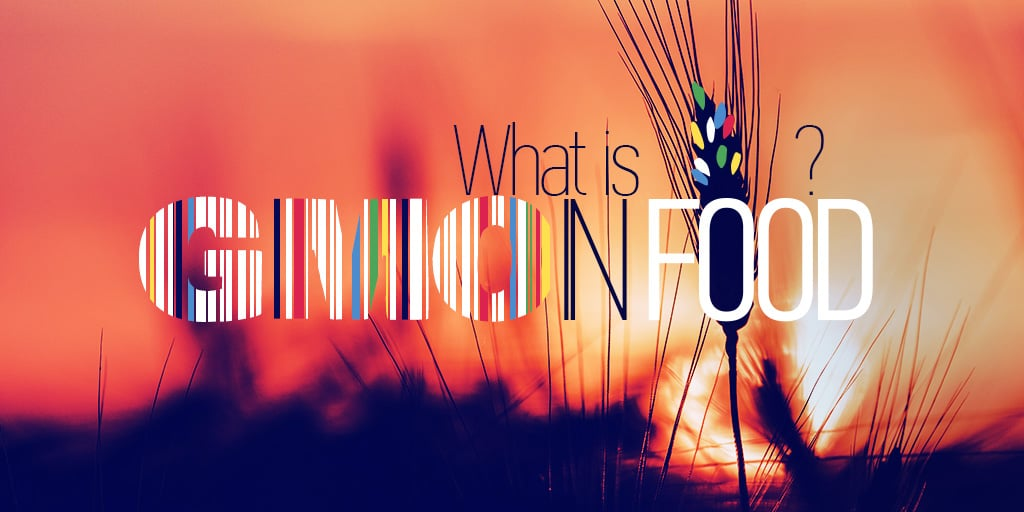Unravelling GMOs:  What is GMO and Why Is It In Your Food?