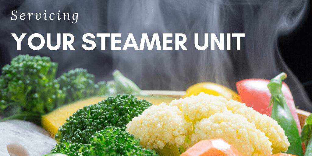 Servicing Your Steamer Unit
