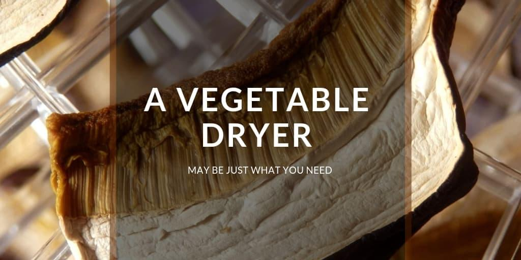A Vegetable Dryer May Be Just What You Need