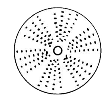 Electrolux Professional 650148 (P300) Grating Disc