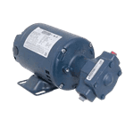 FMP 175-1195 Pump and Motor Assembly 115/230V